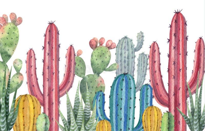 Bandeira do vetor da aquarela dos cactos e das plantas suculentos isolados no fundo branco ilustração royalty free