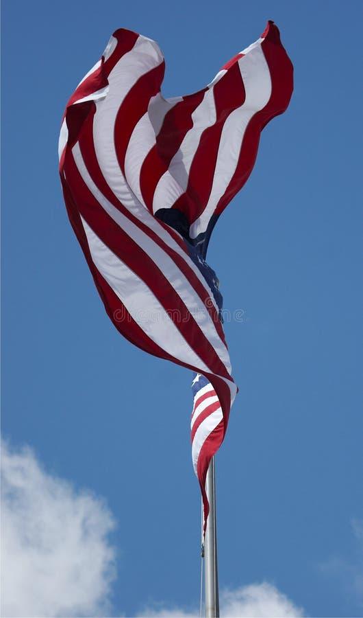 Bandeira dos E.U fotos de stock