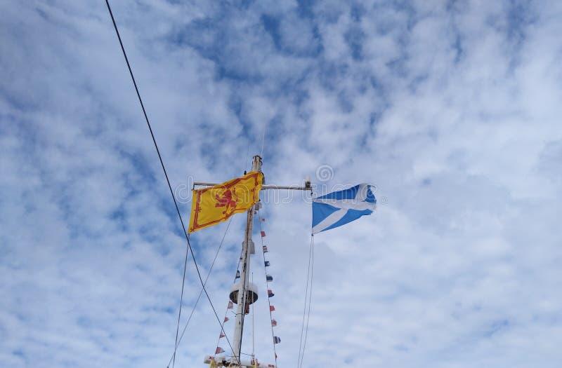Bandeira escocesa fotografia de stock