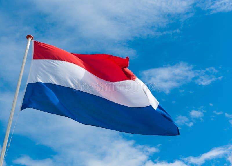 Bandeira holandesa foto de stock