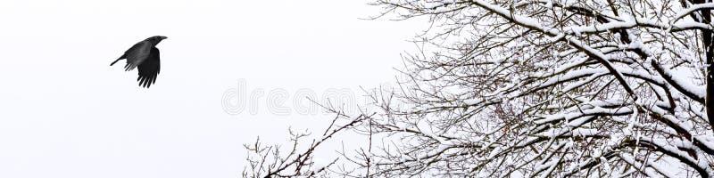Bandeira horizontal de um inverno frio e nevado