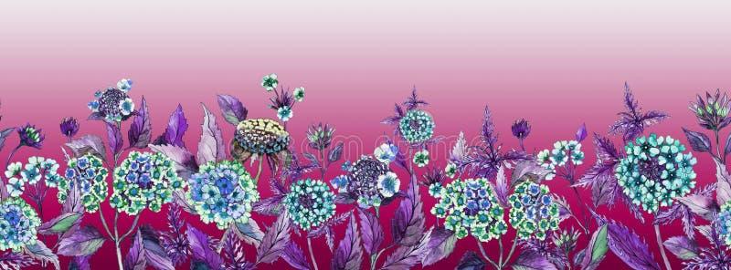 Bandeira larga do verão colorido O Lantana bonito floresce com as folhas roxas no fundo cor-de-rosa ilustração do vetor