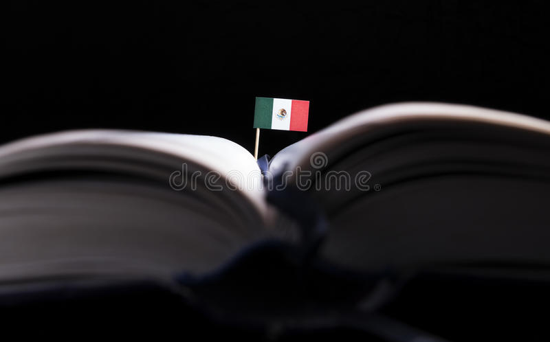 Bandeira mexicana no meio do livro Conhecimento e educação fotografia de stock royalty free