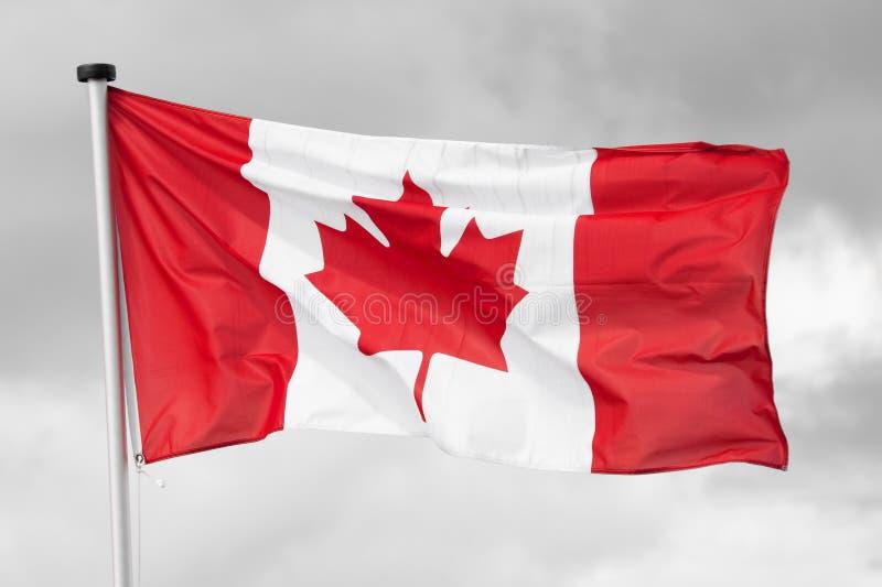 Bandeira nacional de Canadá foto de stock