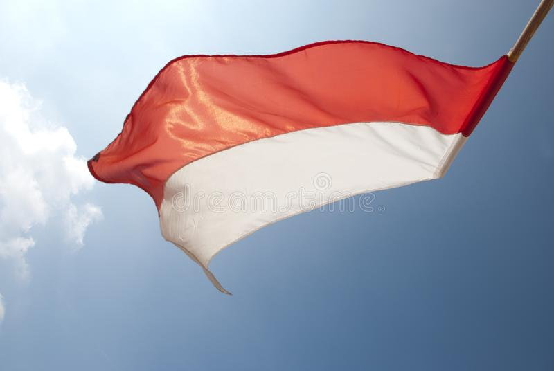 Bandeira no sol no vento fotos de stock
