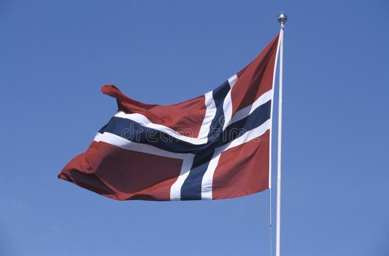 Bandeira norueguesa no vento fotos de stock royalty free