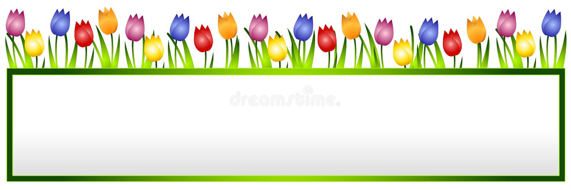 Bandeira ou logotipo da flor dos Tulips da mola ilustração stock