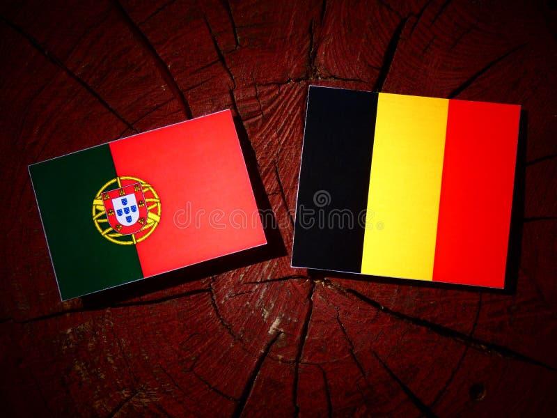 Bandeira portuguesa com bandeira belga em um coto de árvore isolado imagens de stock