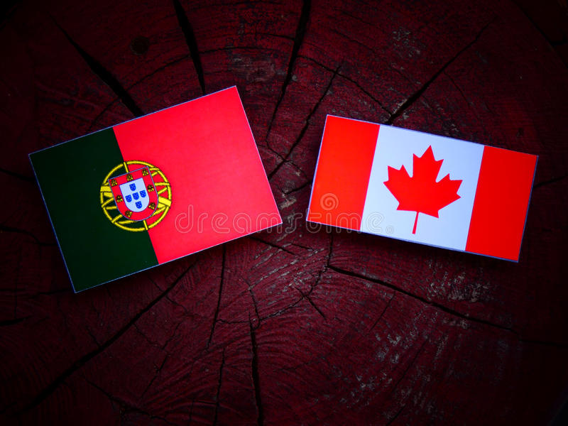 Bandeira portuguesa com bandeira canadense em um coto de árvore isolado imagens de stock royalty free