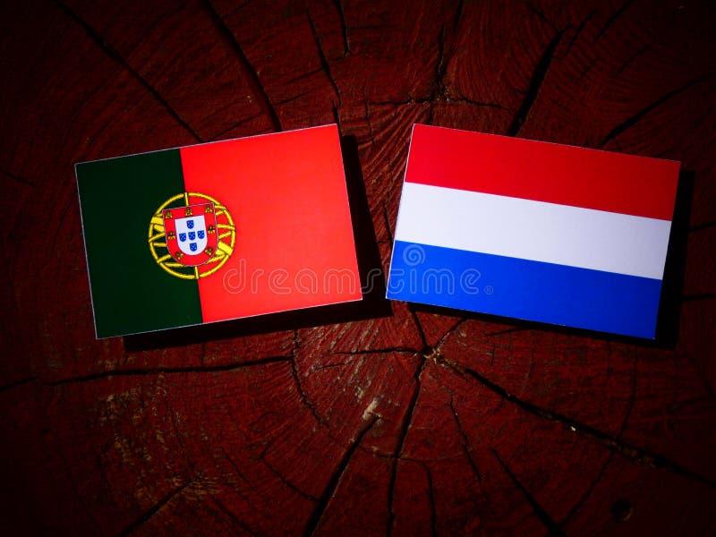 Bandeira portuguesa com bandeira holandesa em um coto de árvore isolado foto de stock