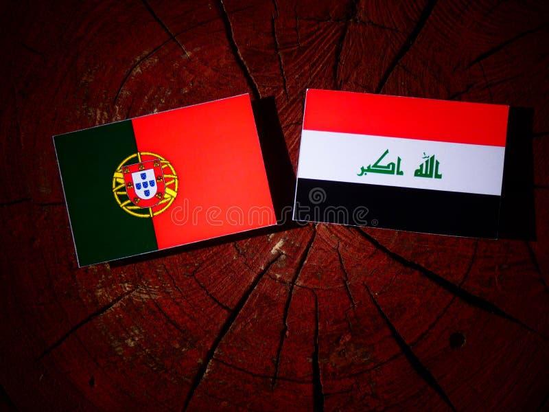 Bandeira portuguesa com bandeira iraquiana em um coto de árvore isolado fotos de stock
