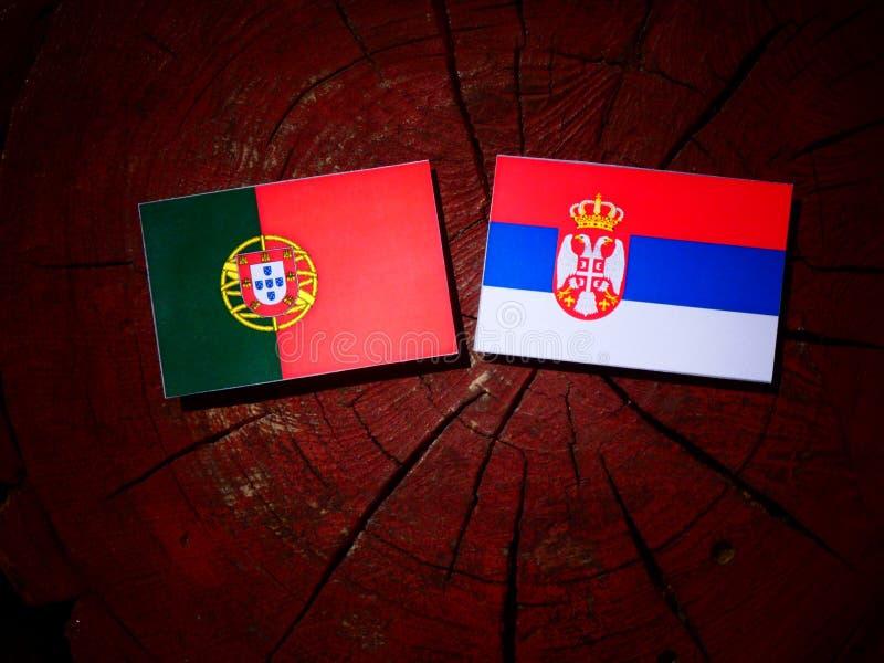 Bandeira portuguesa com bandeira sérvio em um coto de árvore fotos de stock royalty free