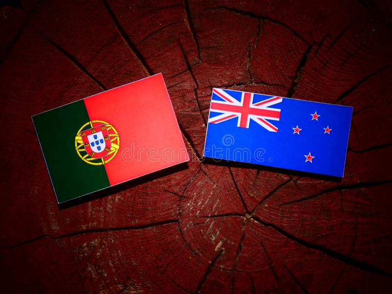 Bandeira portuguesa com bandeira de Nova Zelândia em um coto de árvore isolado fotografia de stock