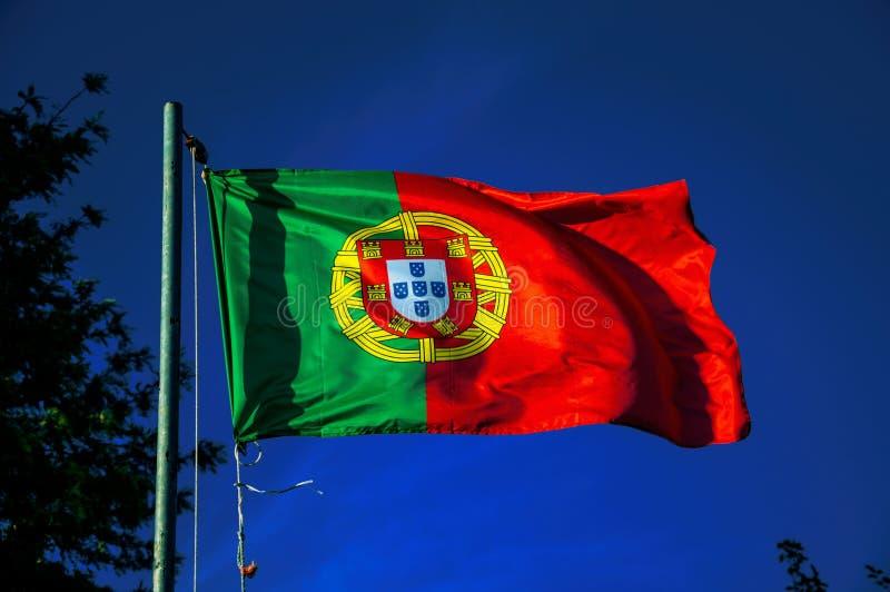 Bandeira portuguesa que vibra no céu azul foto de stock royalty free