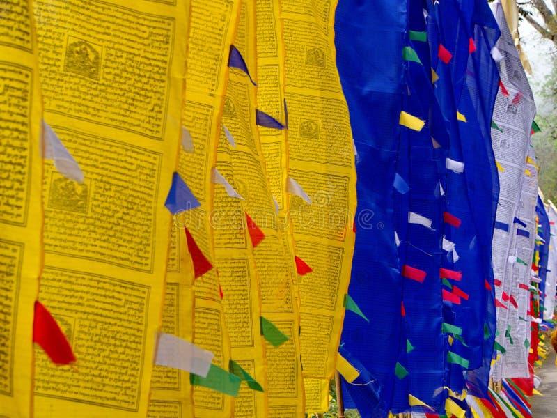 Bandeira tibetana da oração para a fé, a paz, a sabedoria, a piedade, e o st imagem de stock royalty free