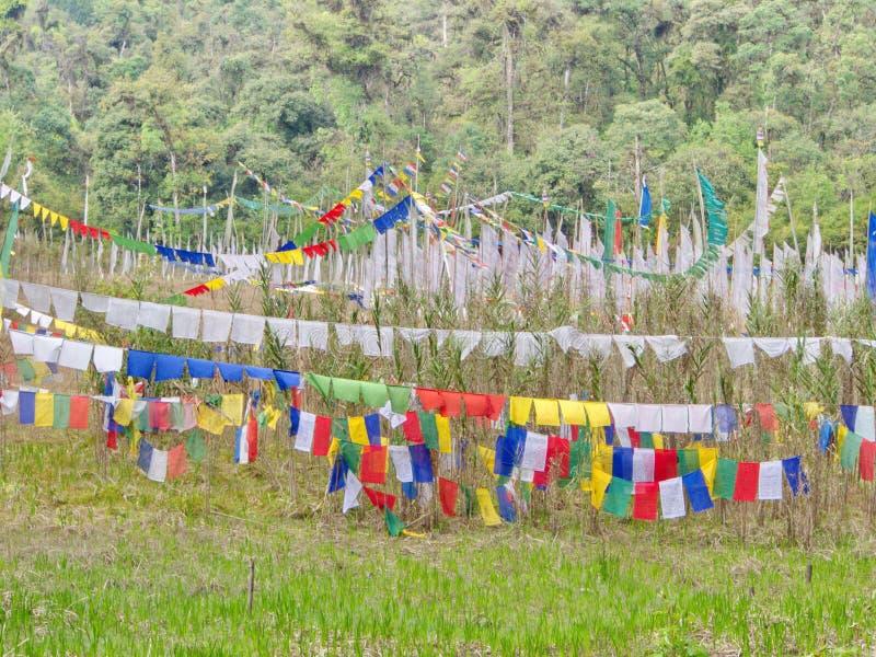 Bandeira tibetana da oração para a fé, a paz, a sabedoria, a piedade, e o st imagem de stock