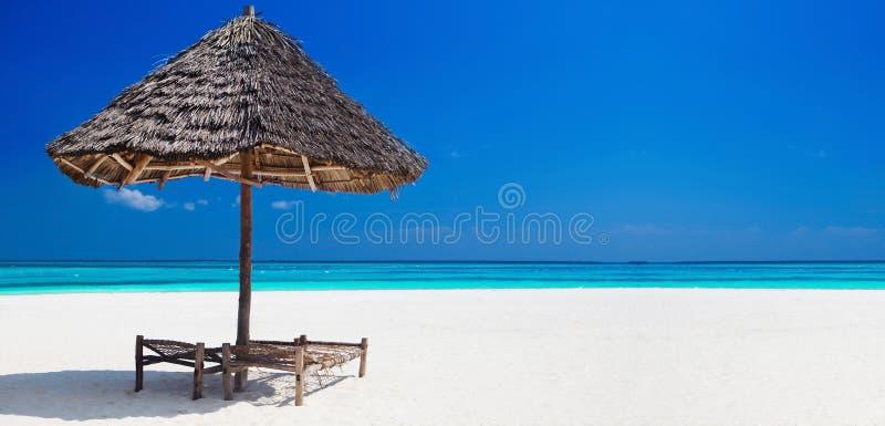 Bandeira tropical das férias foto de stock royalty free