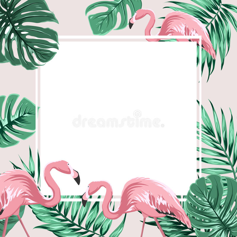 A bandeira tropical do quadro da beira sae de pássaros do flamingo ilustração do vetor