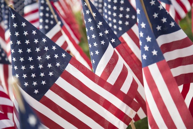 Bandeiras americanas imagens de stock