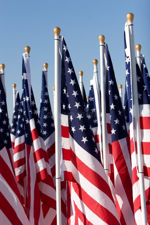Bandeiras americanas fotografia de stock
