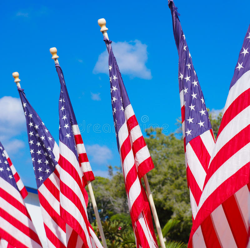 Bandeiras americanas imagem de stock royalty free