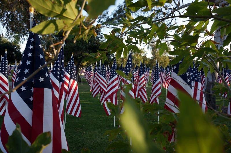 Bandeiras americanas Feriado de Memorial Day foto de stock royalty free