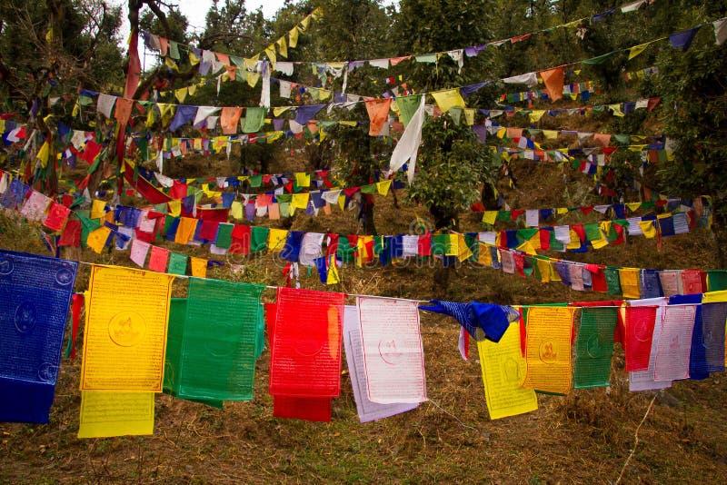 Bandeiras budistas da oração, caminhada de Kora, McLeod Ganj, Índia foto de stock