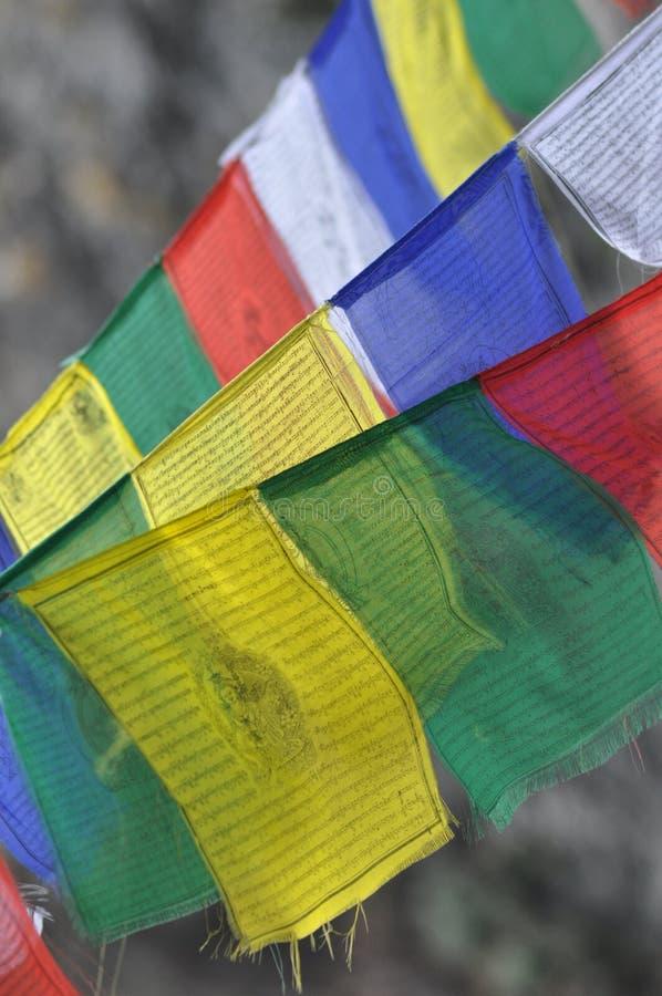 Bandeiras budistas nepalesas da oração fotografia de stock