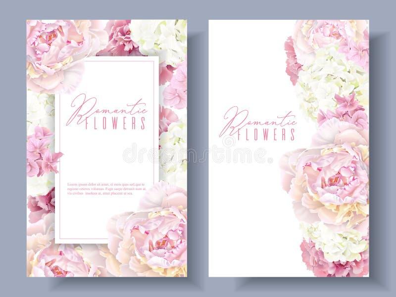 Bandeiras cor-de-rosa da peônia ilustração stock