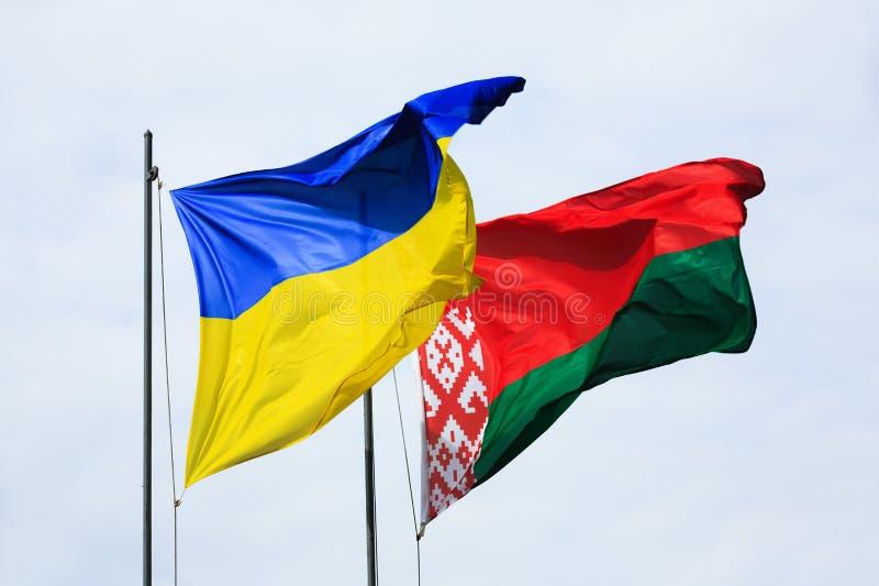 Bandeiras de ondulação de Ucrânia e de Bielorrússia imagem de stock