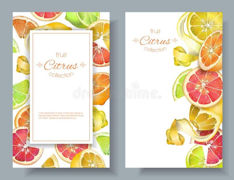 Bandeiras do vertical do citrino ilustração stock