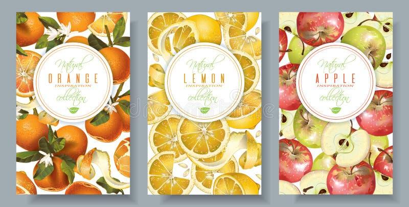 Bandeiras do vertical do fruto ilustração stock