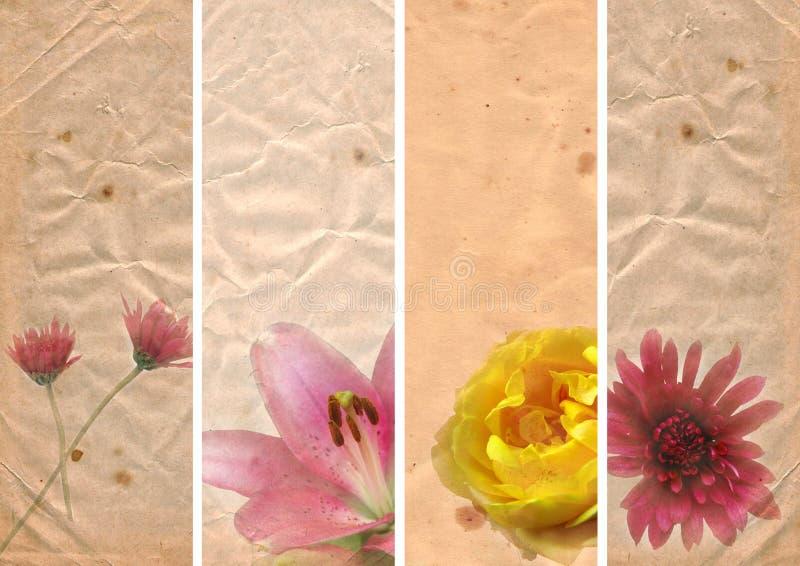 Bandeiras encantadoras com elementos florais ilustração do vetor