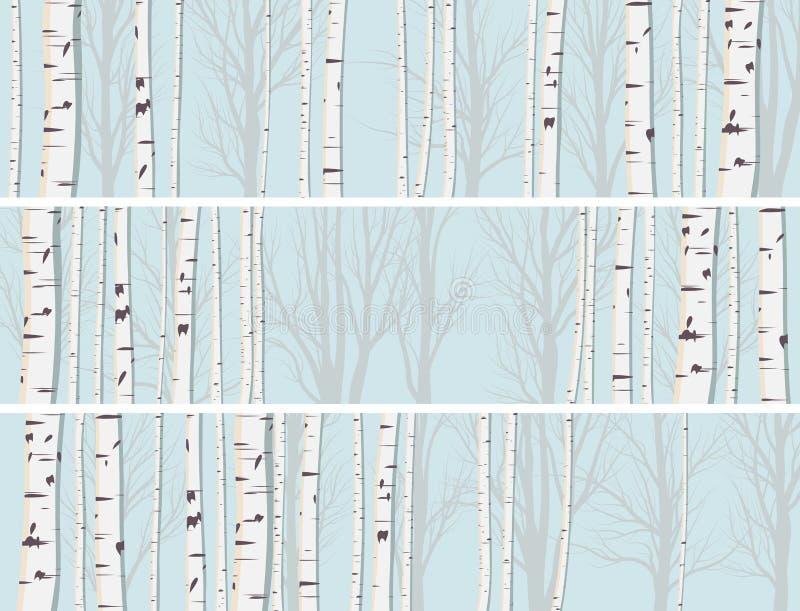 Bandeiras horizontais da floresta dos troncos do vidoeiro. ilustração royalty free