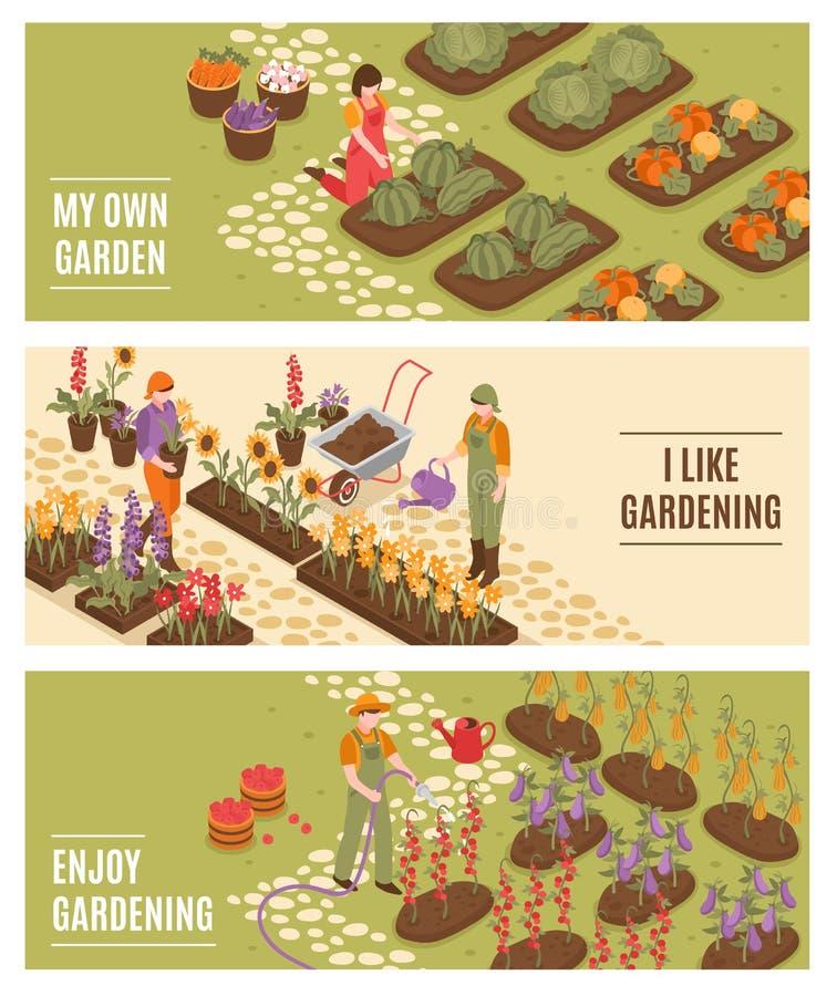 Bandeiras isométricas de jardinagem ajustadas ilustração royalty free