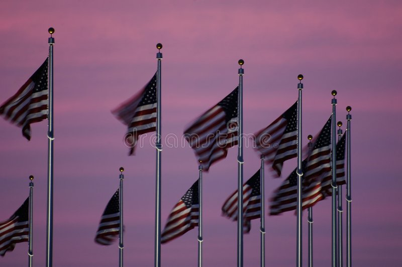 Bandeiras no crepúsculo fotografia de stock