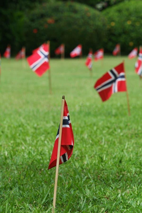 Bandeiras norueguesas em um jardim imagem de stock