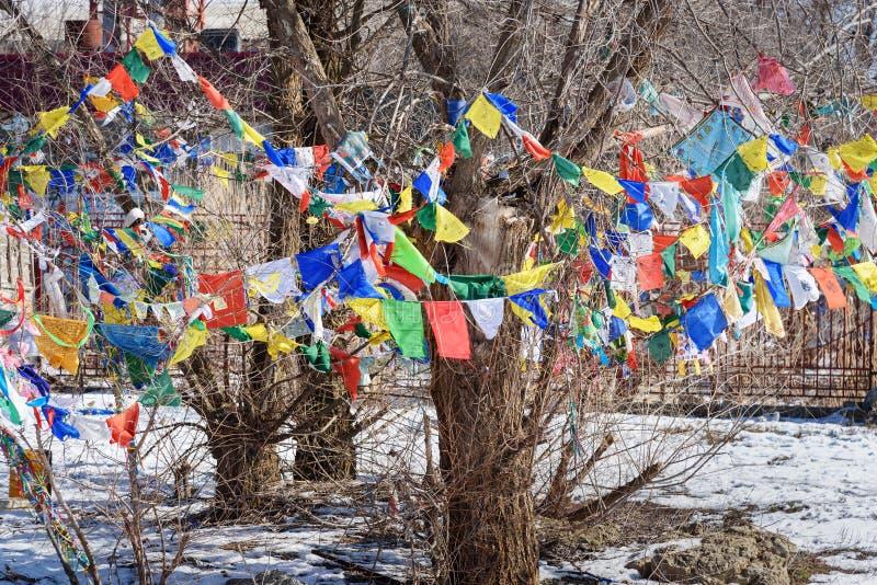 Bandeiras rezando do budista no domicílio dourado complexo budista da Buda Shakyamuni em Elista Calmúquia Rússia fotos de stock
