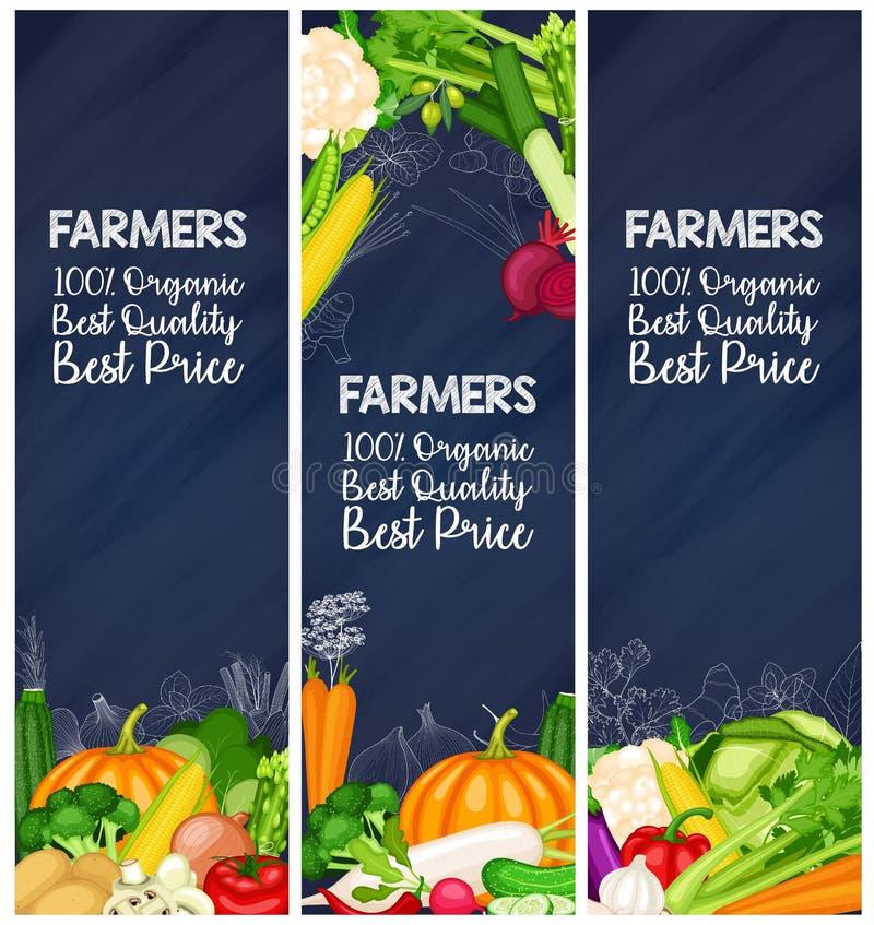 Bandeiras saudáveis do alimento ajustadas ilustração royalty free