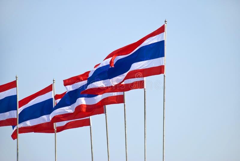 Bandeiras tailandesas fotografia de stock
