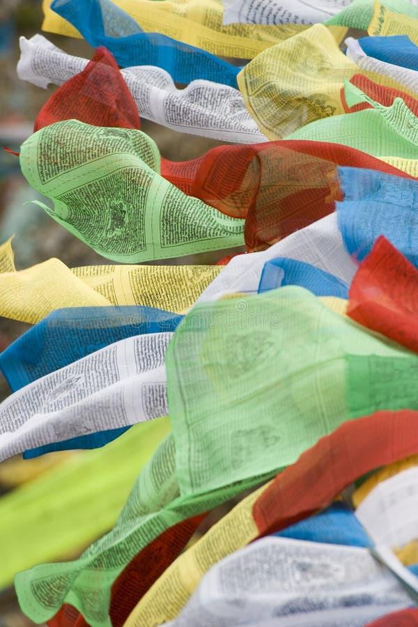 Bandeiras tibetanas da oração em Lhasa fotos de stock royalty free
