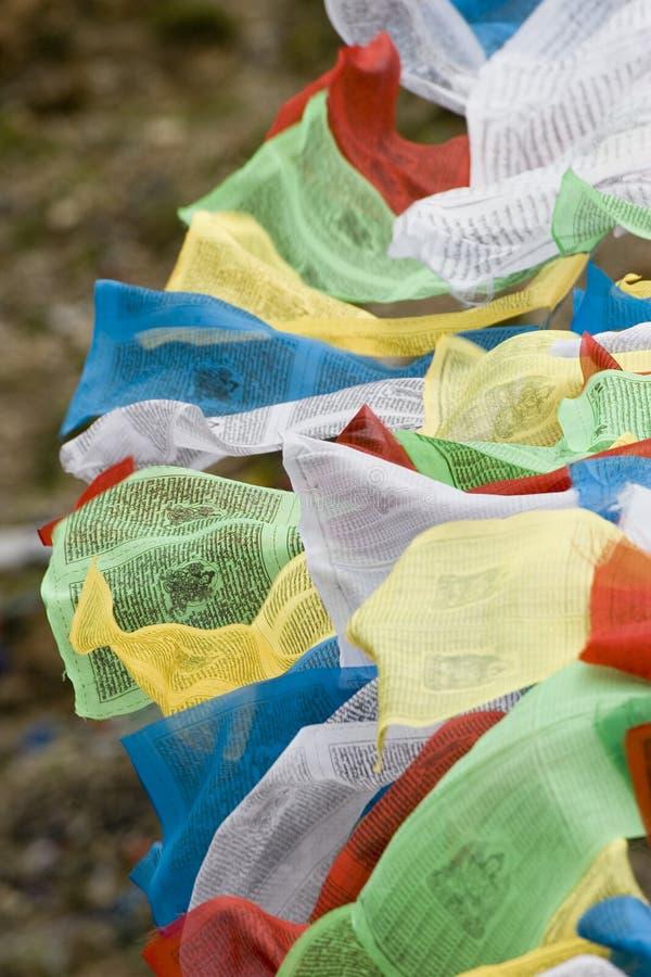 Bandeiras tibetanas da oração em Lhasa fotografia de stock royalty free
