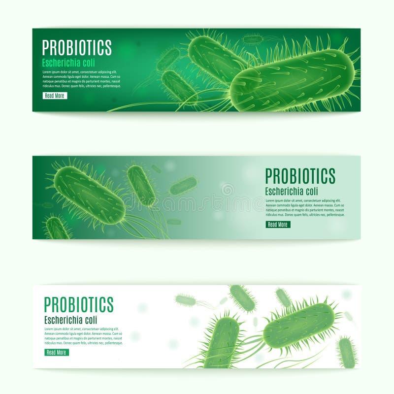 Bandeiras verdes horizontais da Web do vetor de Probiotics ajustadas ilustração stock