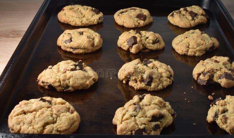 Bandeja da folha de cookie com chocolate Chip Cookies fotografia de stock