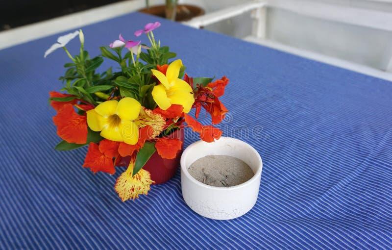 Bandeja de cinza com o potenciômetro de flor tropical fotos de stock