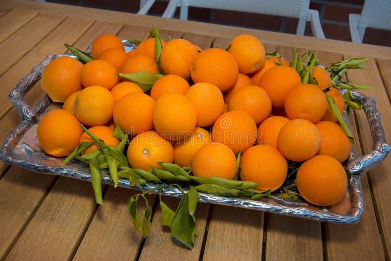 Bandeja de fruta de las naranjas de la Florida foto de archivo
