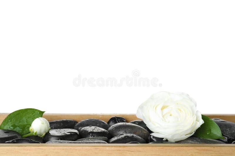 Bandeja de madeira com as pedras dos termas e as flores molhadas do ranúnculo fotos de stock royalty free