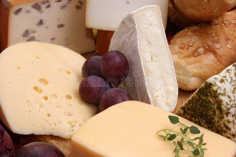 Bandeja do queijo com algum queijo fresco imagens de stock royalty free