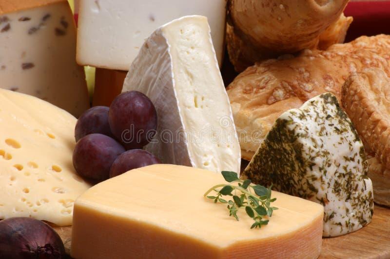 Bandeja do queijo com algum queijo fresco fotos de stock royalty free