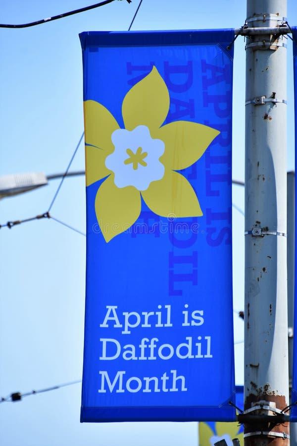 bandera Abril es mes del narciso Vancouver A.C. Canad? abril 2019 foto de archivo libre de regalías